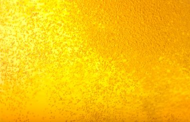 Bubbles in beer.