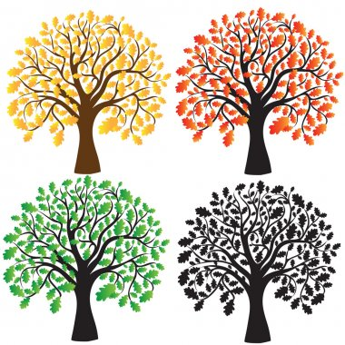 Four oak with yellow, red and green foliage. Ebony. Vector stock vector