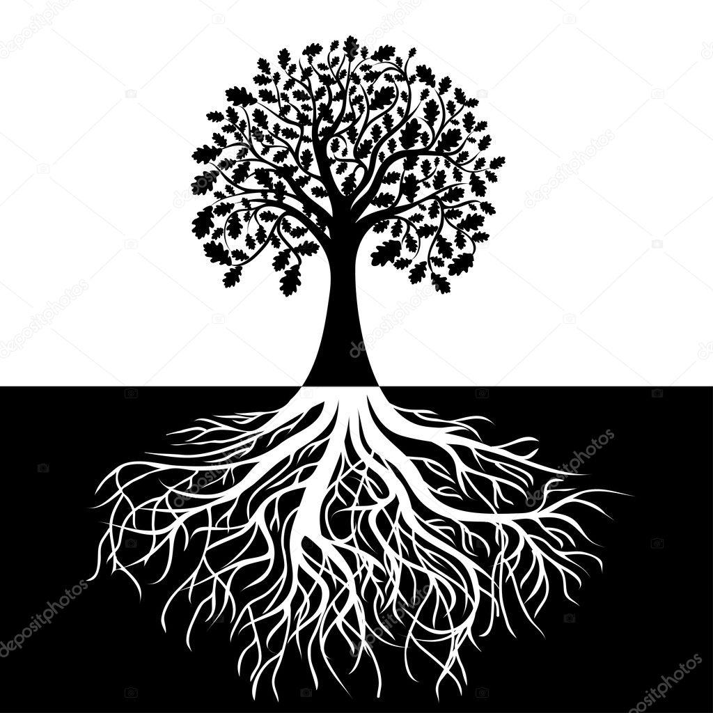 Дерево с корнями на черно-белом фоне — Векторное ...