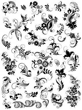 Set of graphic floral elements