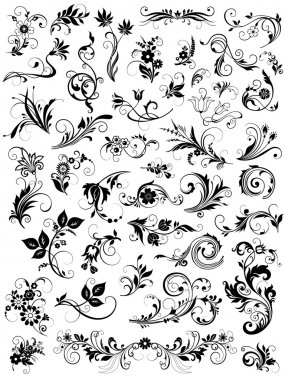Calligraphic floral design elements