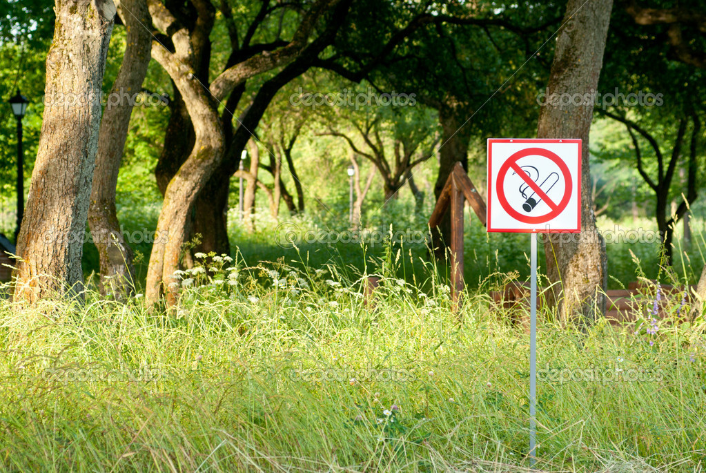выделена знак не курите в лесу дорожек