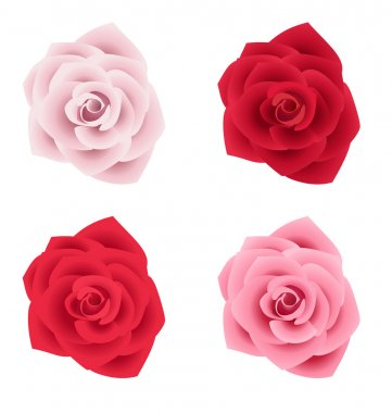 Set of four roses of various colors
