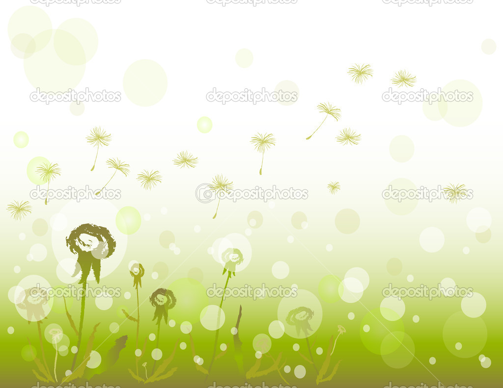 Flowers dandelions background