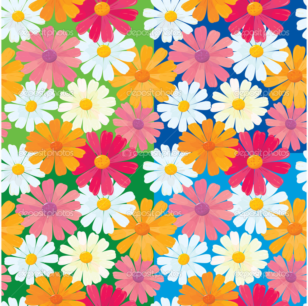 Seamless textures of ox-eye daisy flowers
