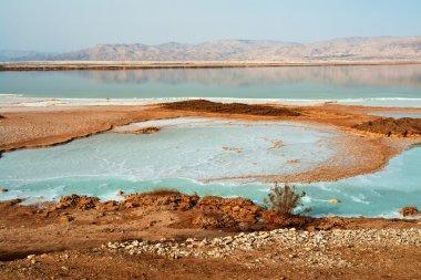 View of Dead Sea Israel coastline