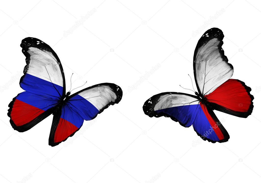 Concept - two butterflies with Russian and Czech flags flying