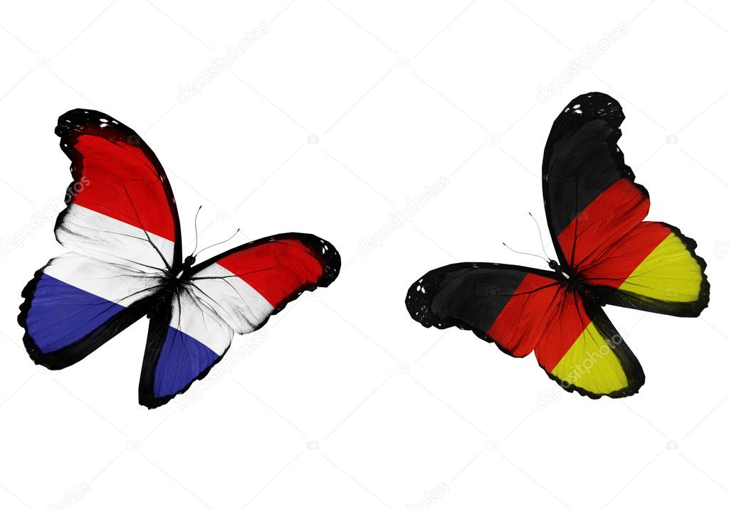 Concept - two butterflies with Netherlandish and German flags fl