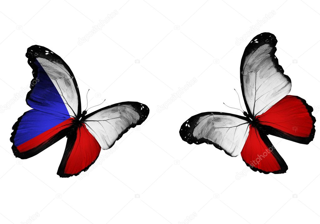 Concept - two butterflies with Czech and Polish flags flying