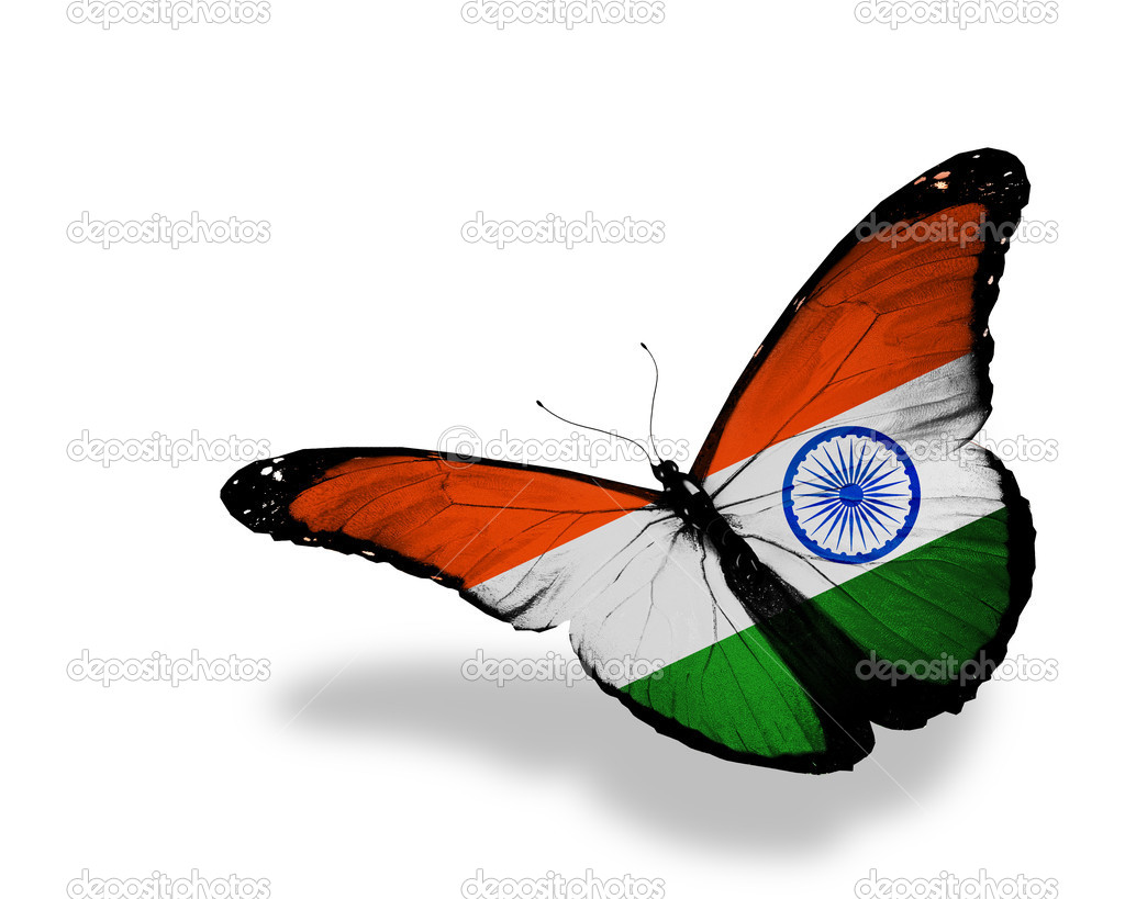 Indian Flag Butterflies: Indian Flag Butterfly Flying, Isolated On White Background