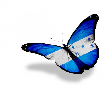 Honduras flag butterfly flying, isolated on white background