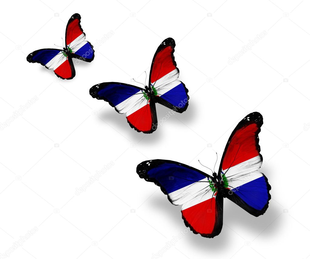 Three Dominican Republic flag butterflies, isolated on white