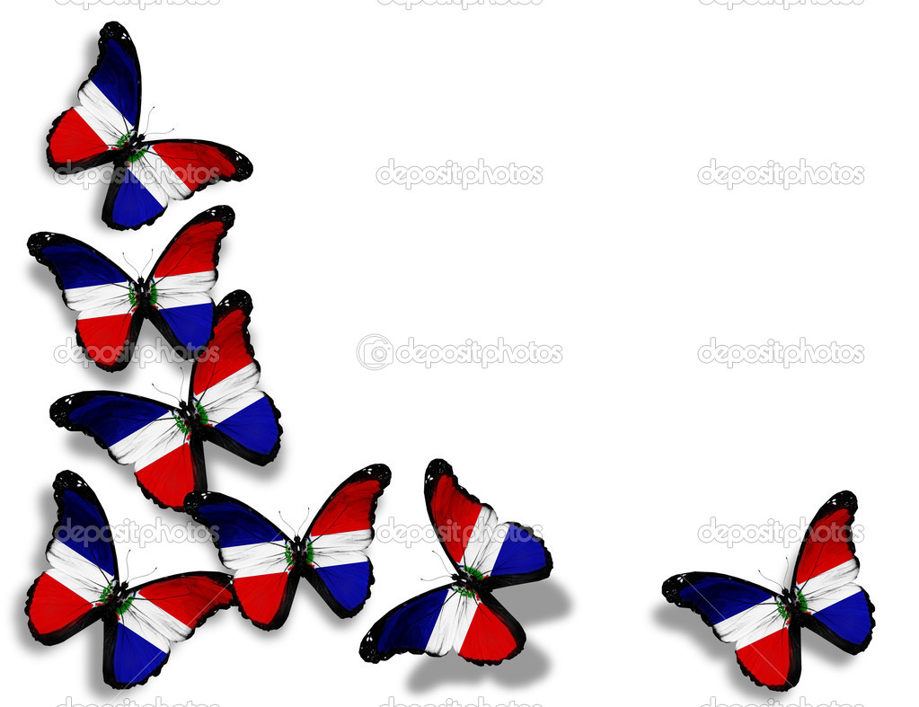 Dominican republic flag butterflies isolated on white background dominican republic flag butterflies isolated on white background photo by suntiger biocorpaavc Image collections