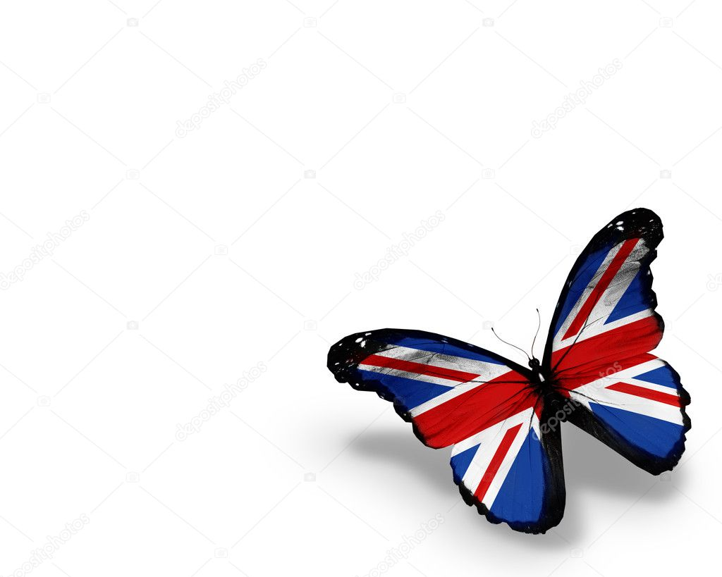English flag butterfly, isolated on white background