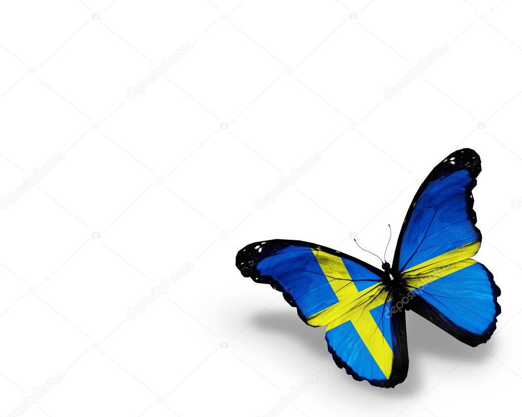 gratis bilder svenska flaggan