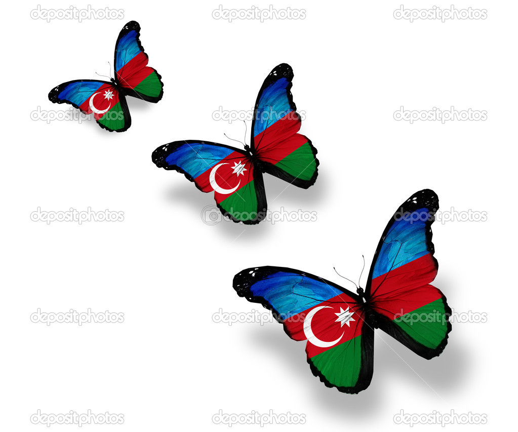 Three Azerbaijani flag butterflies, isolated on white