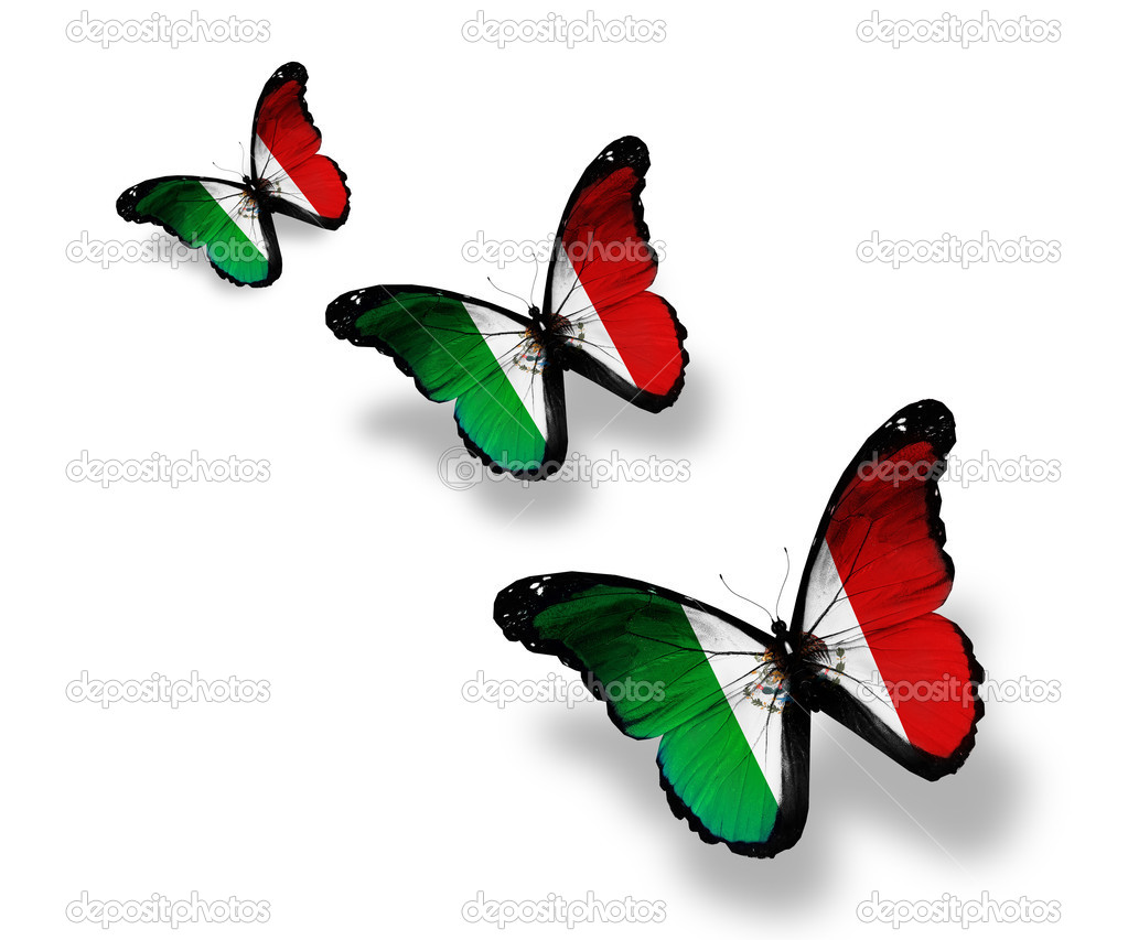 Three Mexican flag butterflies, isolated on white — Stock ...