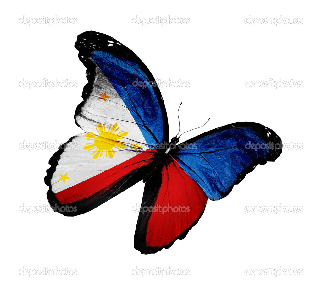 Philippine flag butterfly flying, isolated on white background
