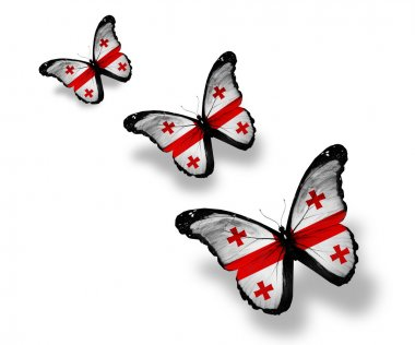 Three Georgian flag butterflies, isolated on white