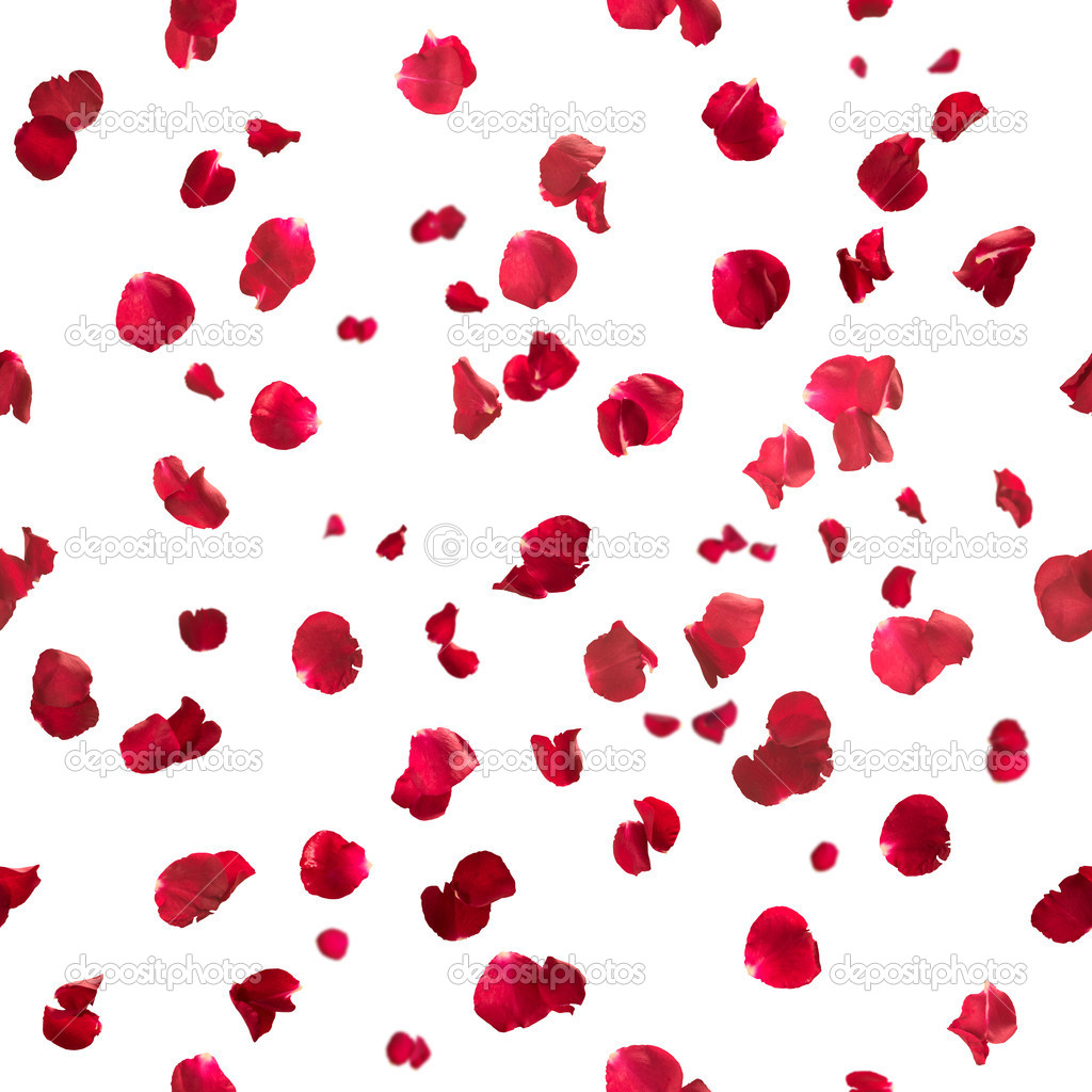 Seamless rose petals