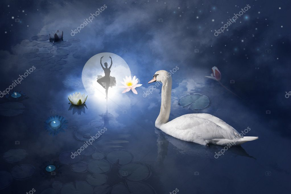 Swan with ballerina at moon