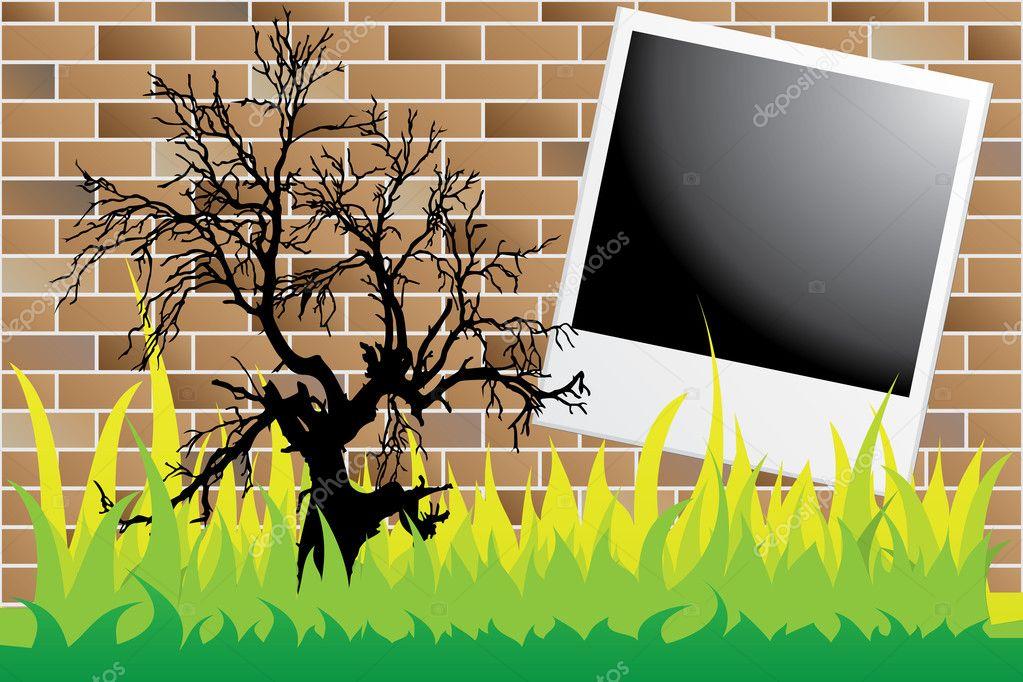 Dead tree on wall with polaroid