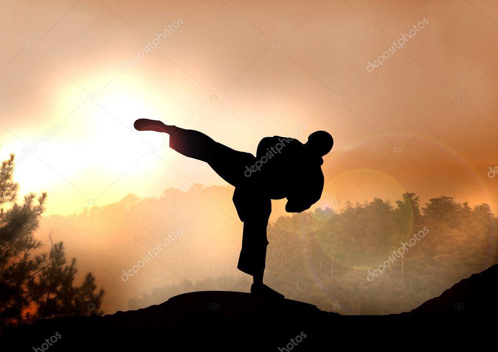 Stock Illustration of Karateka Training on Mountain
