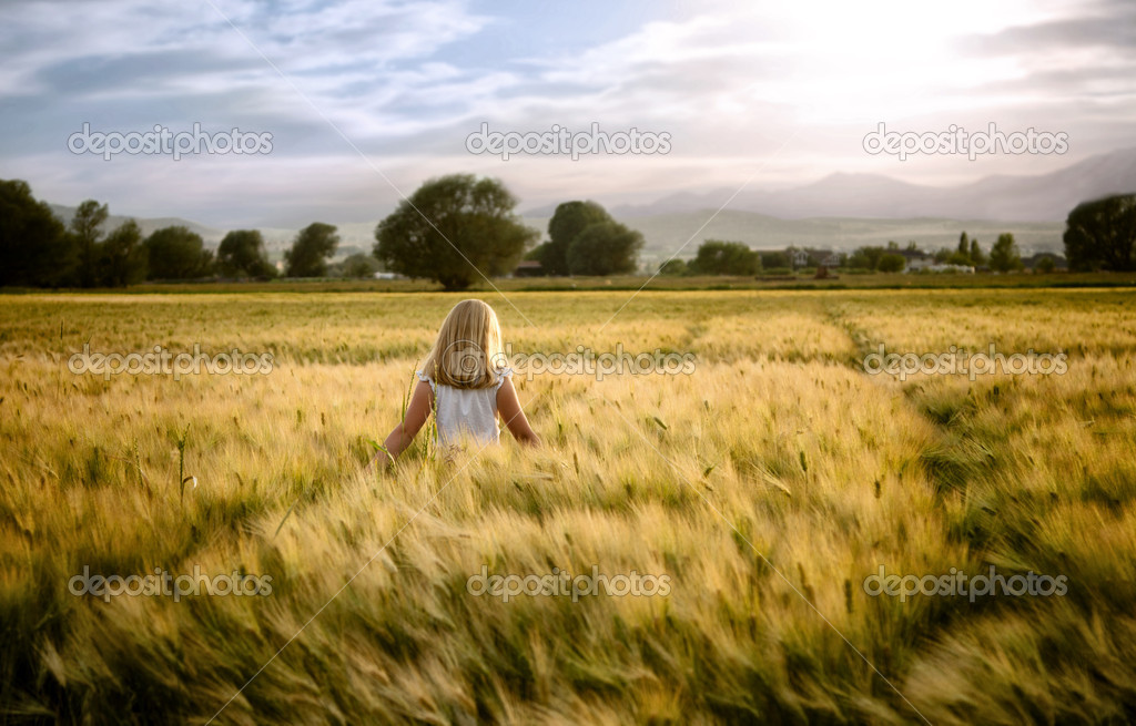 Girl or teen walking through wheat field