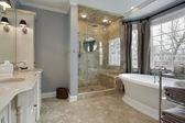 Hlavní koupelna s prosklený sprchový kout