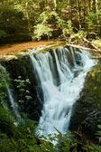 Wasserfälle in der Nähe des Dienstes
