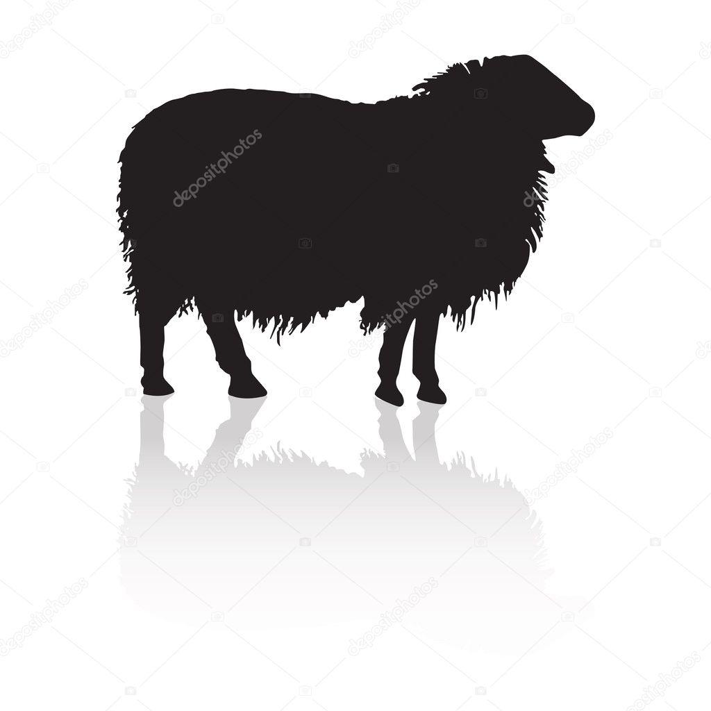 Pecore sagoma degli animali di fattoria vettoriali for Piani di fattoria di 2000 piedi quadrati