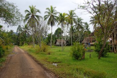 Village in Papua New Guinea