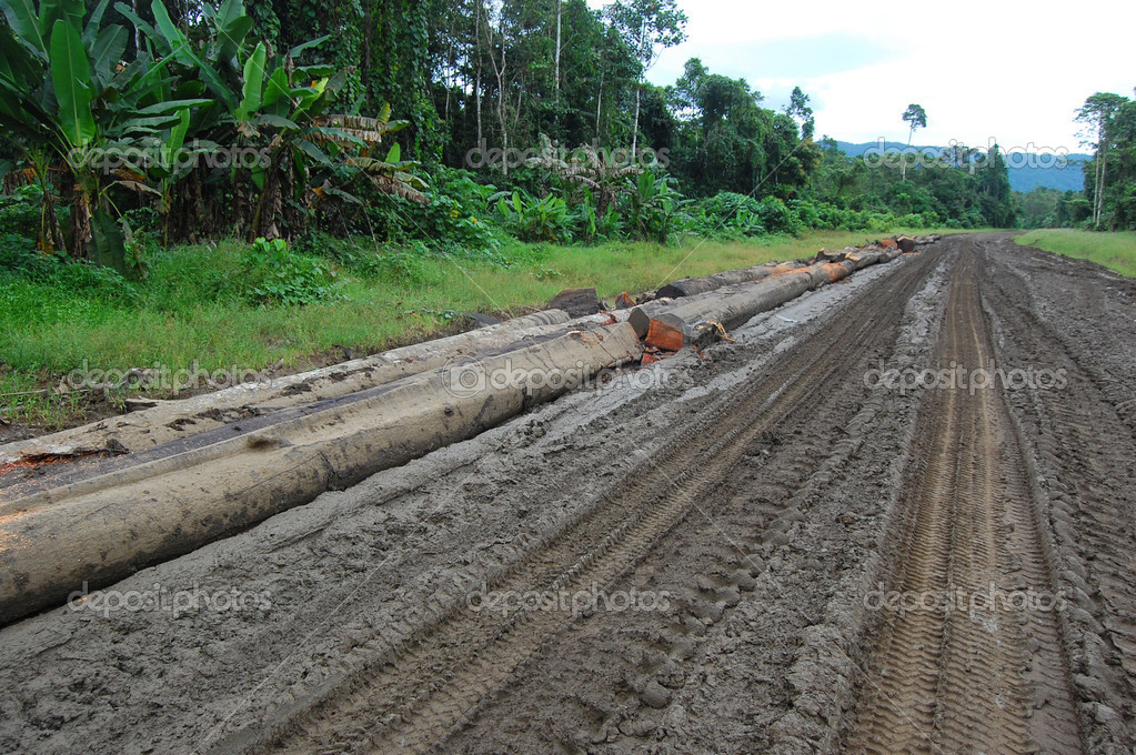 Haulage road in outback of Papua New Guinea