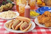 Fényképek Piknik ebéd hot dog