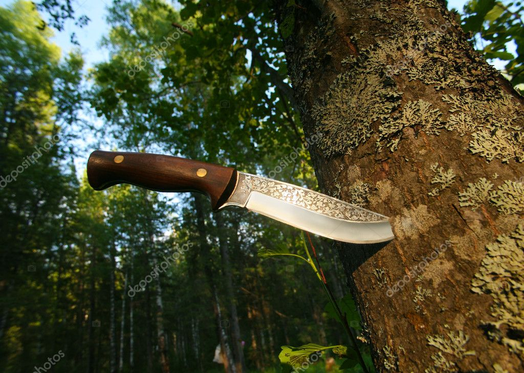 Hunting knife in tree trunk