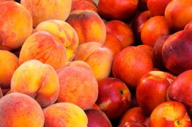 Nectarine and peaches