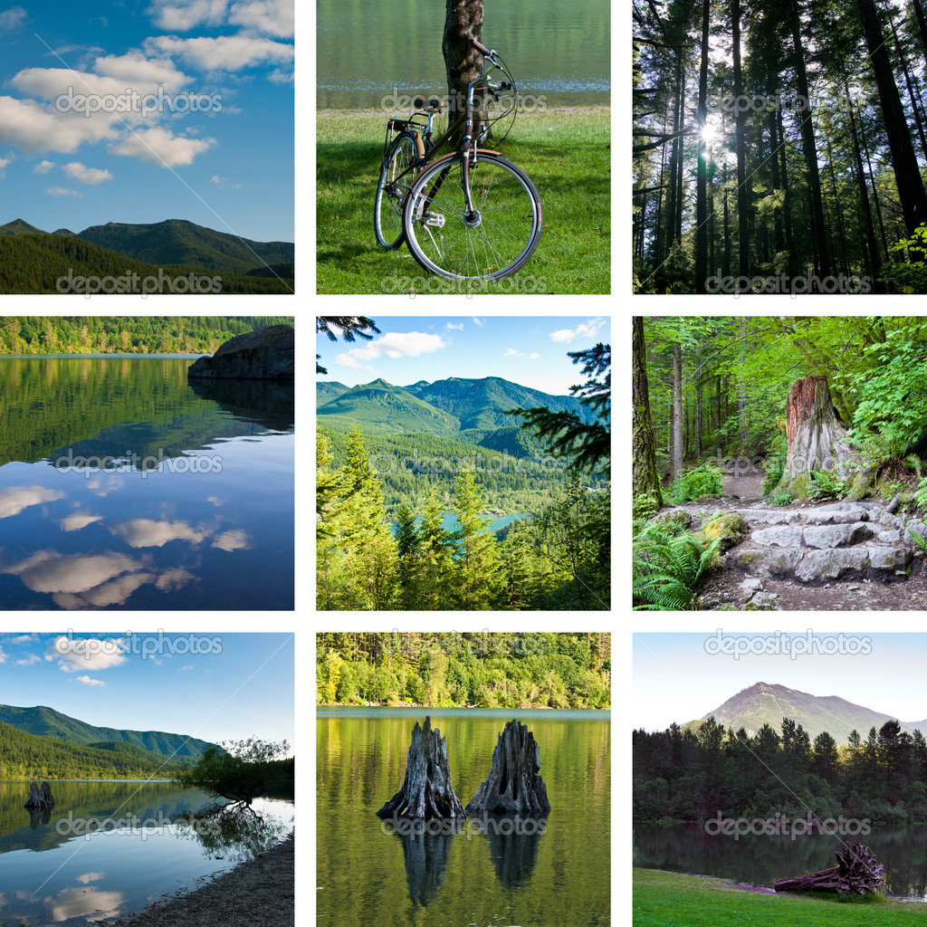 Lake and forest hiking trail collage