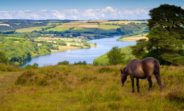 Wimbleball Lake Exmoor National Park Somerset England