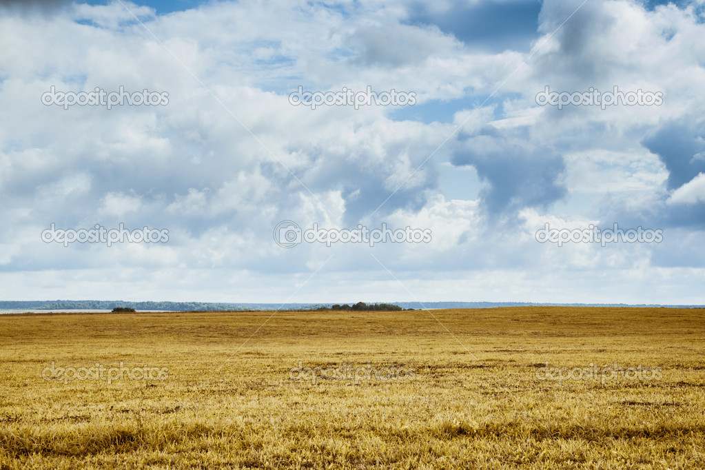 dry grass field background. Background Field With Dry Grass On Plain \u2014 Photo By Dasny S