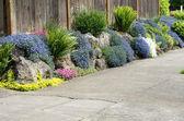 Fotografie Urban Garten gepflanzt auf Bürgersteig