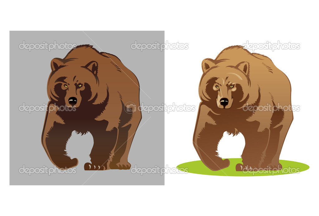 Illustration of a bear