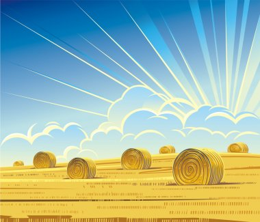 Summer rural landscape with hay