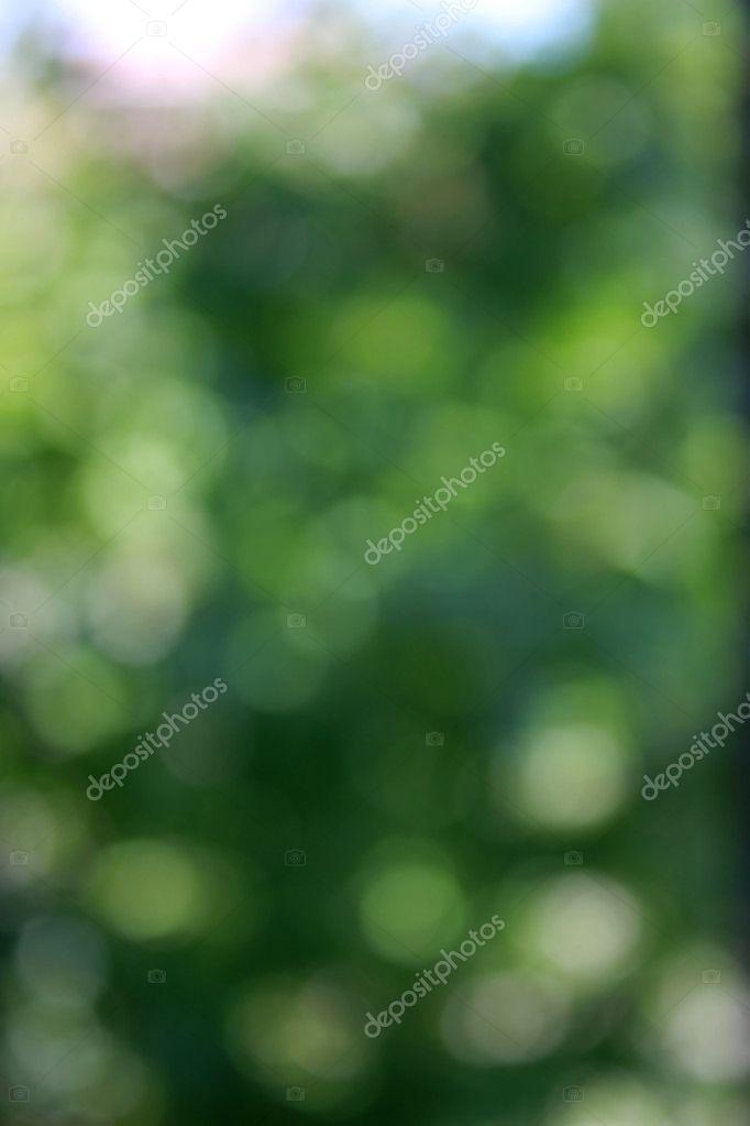 Green defocused nature background