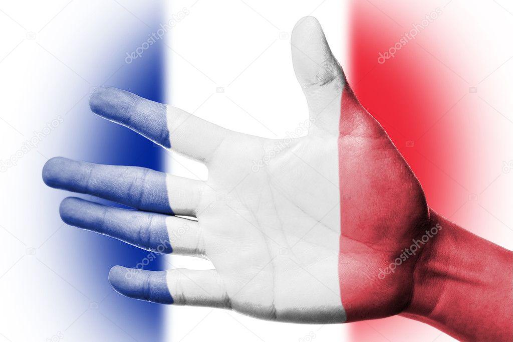 Fransa Ulusal Bayrak Boyama Stok Foto Hin255 11653851