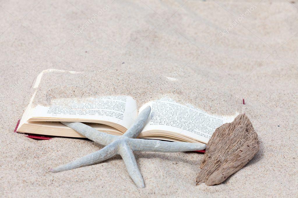 un livre ouvert avec une toile de mer et un morceau de bois flott couch sur la plage. Black Bedroom Furniture Sets. Home Design Ideas