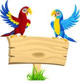 Papoušek pták s prázdnou tabulka
