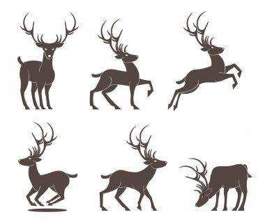 Deer Set vector