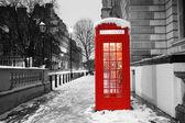 Fotografie Londýn telefonní budka