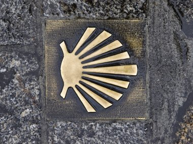 Pilgrim's shell (Venera) in the way of Santiago de Compostela