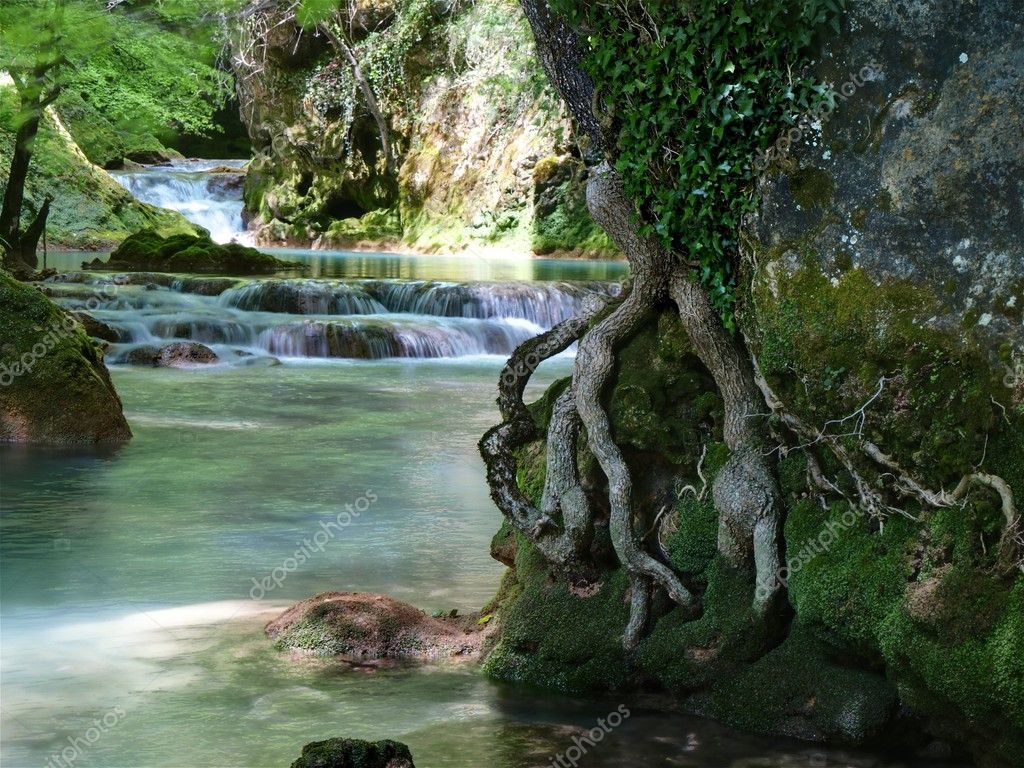 Roots and Waterfalls